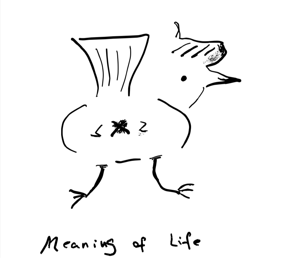 meaningoflife_smallsqure.png